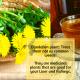 behealthywise - Dandelion Plant